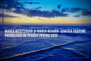 Noi posibilități de pescuit în Marea Neargră şi Marea Mediterană, în 2022
